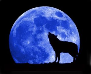 Blue-Moon-Space.com_-300x204 Are you ready for the Blue Moon, Super Moon and Blood Moon?
