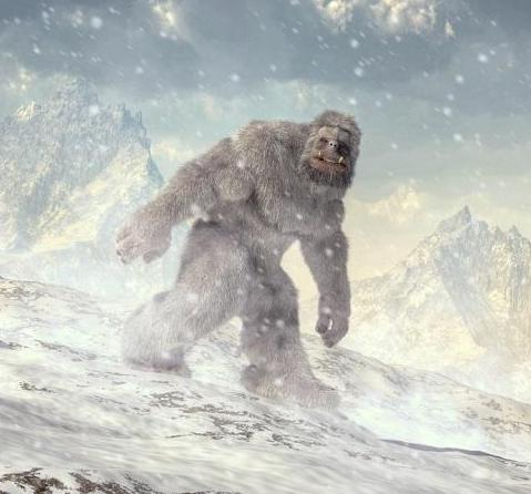 4 Foot Prints of 'Yeti' found, claims Indian Army